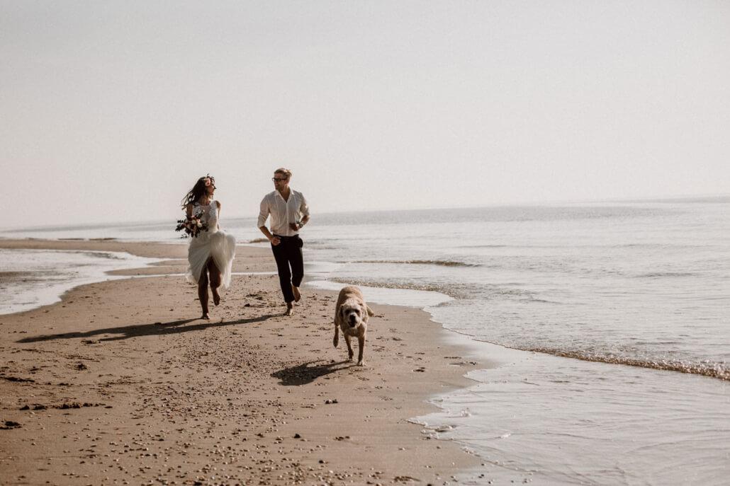 Strandhochzeit Brautpaar am Strand mit Hund